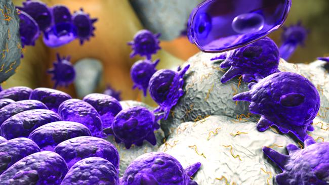 Костнозамещающий материал с остеогенными свойствами i-Factor™
