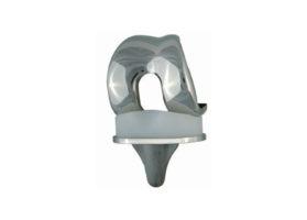 Тотальный эндопротез коленного сустава – тип SVL/RP